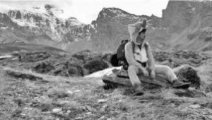 Elephant Hike 2013 - a fundraising hike across the Alps.